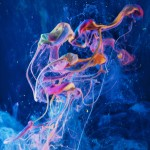 Transcendence - Paint Pouring Abstract Photography Prints Collection - Modern Art Prints