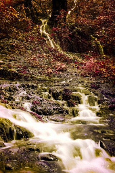 Forrest Waterfalls